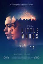 Poster for Little Woods